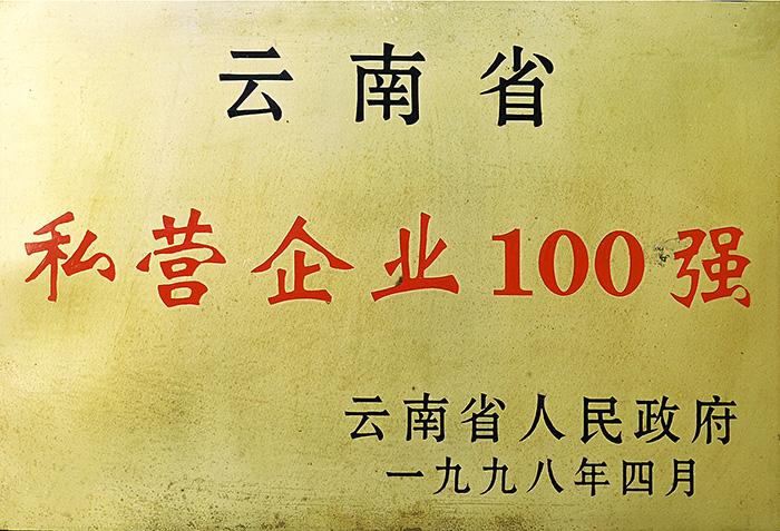 云南省私营企业100强